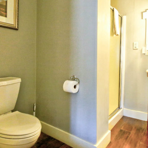 Soft green bathroom with white commode and stand up enclosed shower.